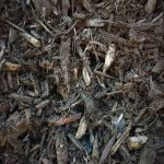 Brown cedear mulch