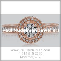 paul-nudelman-jewellers-square